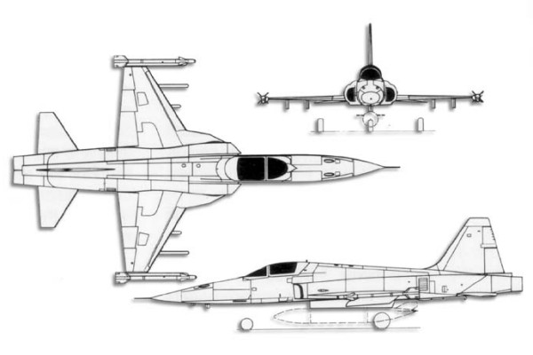 Grunman F5